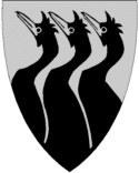 Les 3 cormorans de Røst